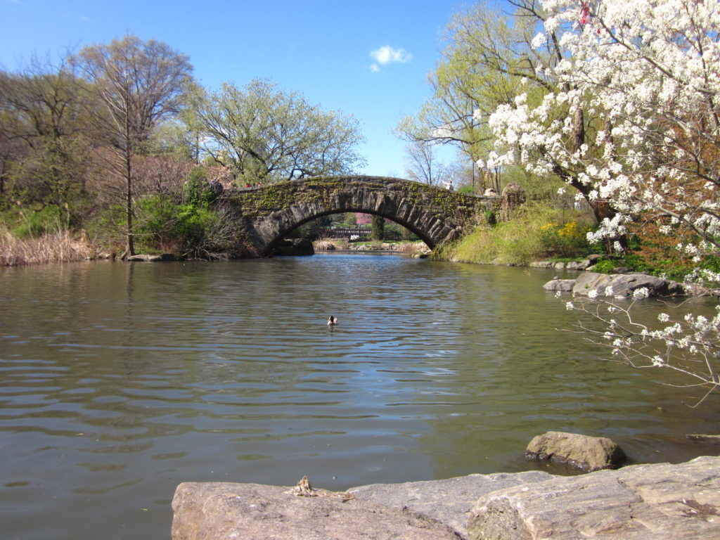 New YorkCity Central Park